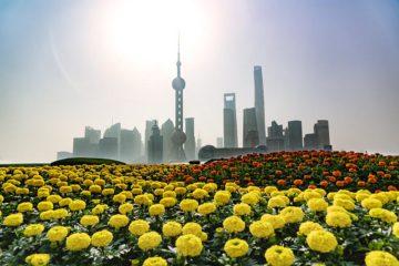 Morgen-Shanghai